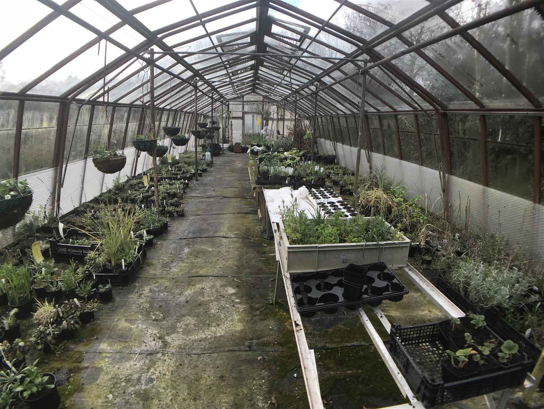 PRINCIPAL GREENHOUSE